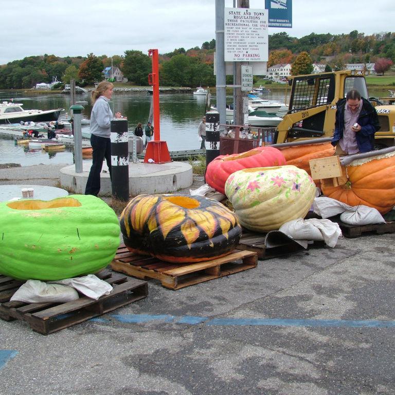 Pumpkin boats Regatta 4